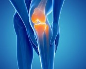 Knee Replacement Treatment